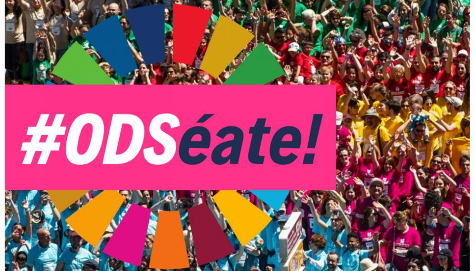 El Colectivo Tierra de Campos se suma a la campaña digital #ODSéate