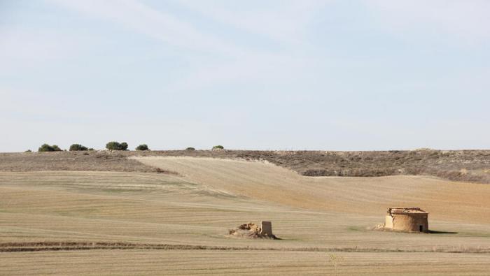 Sostenibilidad y políticas de desarrollo rural: el caso de la Tierra de Campos vallisoletana