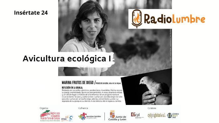 """""""Avicultura ecológica"""""""