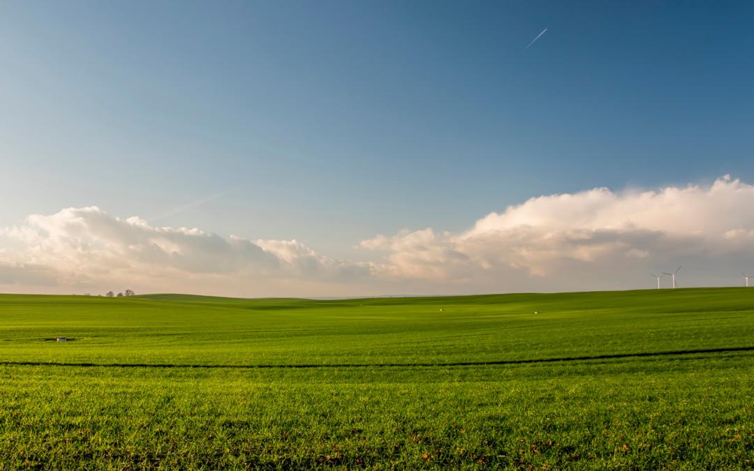 La Junta de Castilla y León amplía el plazo de solicitud de la línea de apoyo a las explotaciones agrarias e industrias agroalimentarias destinada a paliar los efectos del COVID-19