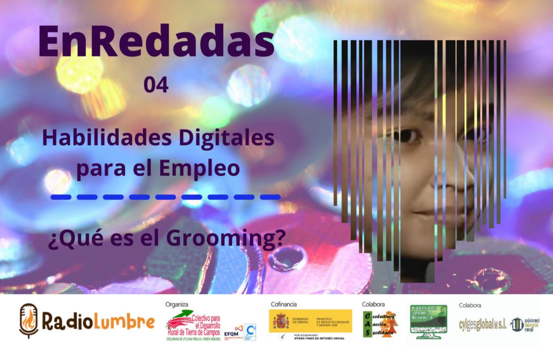 """Habilidades digitales/empleabilidad y """"Grooming"""""""