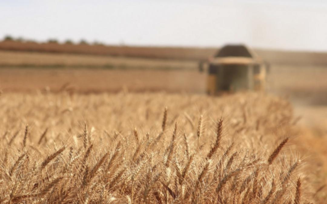 Agricultura abre el plazo para participar en un programa de formación para jóvenes