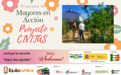 Proyecto CIVITAS