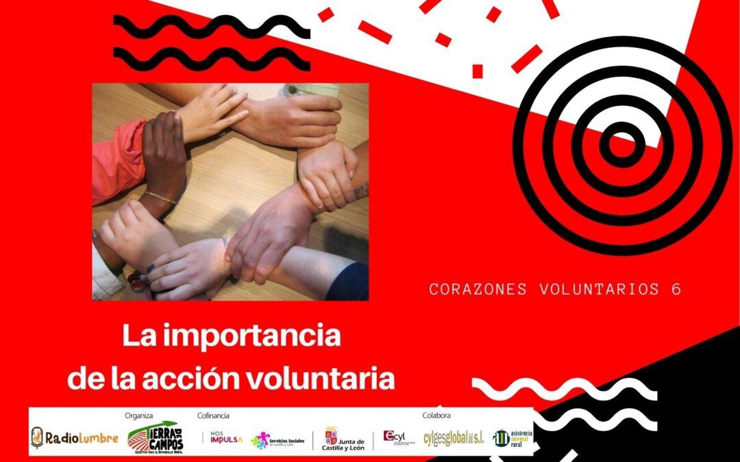 La importancia de la acción voluntaria